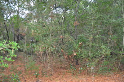 Brunswick County, New Hanover County, Georgetown County, Horry County Residential Lots & Land For Sale: 2114 Heron Trace