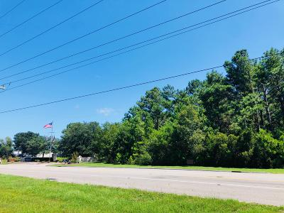 Brunswick County Commercial For Sale: 4534 Long Beach Road SE