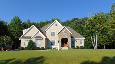 Nashville Single Family Home For Sale: 436 Duck Pond Road