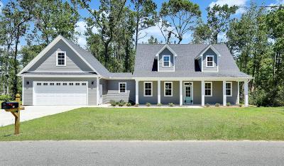 Leland Single Family Home For Sale: 137 Live Oak Drive
