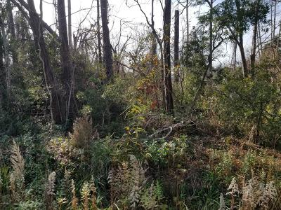 Southport Residential Lots & Land For Sale: 4595 Sea Pines Drive SE