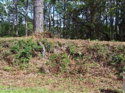 Beaufort Residential Lots & Land For Sale: 955 Crow Hill Road
