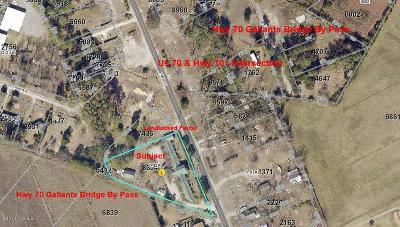 Beaufort Commercial For Sale: 299 Nc Highway 101