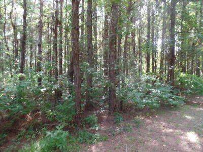 Beaufort Residential Lots & Land For Sale: 127 Garbacon Drive