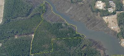 Williston Residential Lots & Land For Sale: 350 Donnie Davis Road