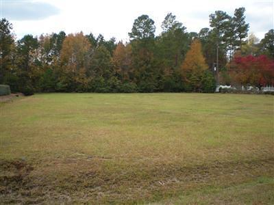 Tabor City Residential Lots & Land For Sale: 202 Canal Street