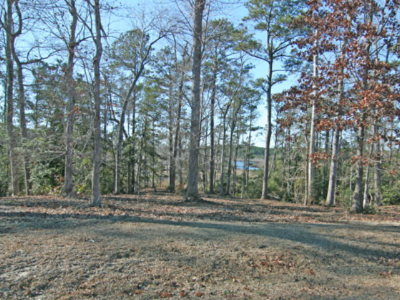Sneads Ferry Residential Lots & Land For Sale: 203 Creek View Circle