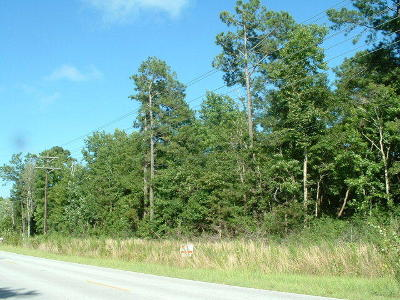 Sneads Ferry Residential Lots & Land For Sale: 1416 Old Folkstone Road