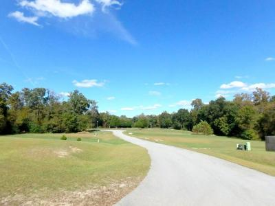 Jacksonville Residential Lots & Land For Sale: 203 Lazy River Court