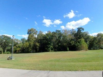 Jacksonville Residential Lots & Land For Sale: 205 Lazy River Court