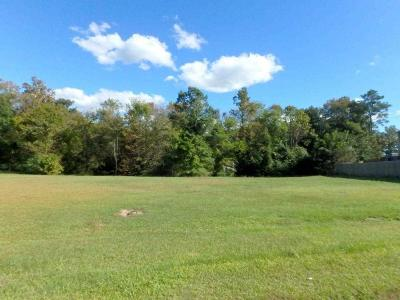 Jacksonville Residential Lots & Land For Sale: 206 Lazy River Court