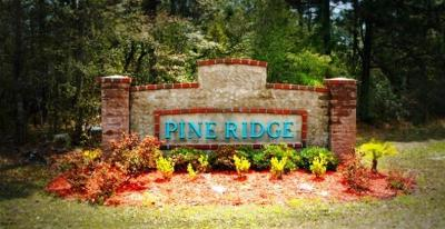 Rental : 196 Pine Hollow Road