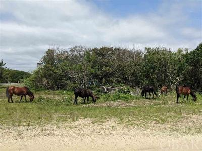 Residential Lots & Land For Sale: 2050 Sandpiper Road