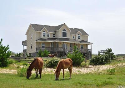 Single Family Home For Sale: 2213 Sandfiddler Road