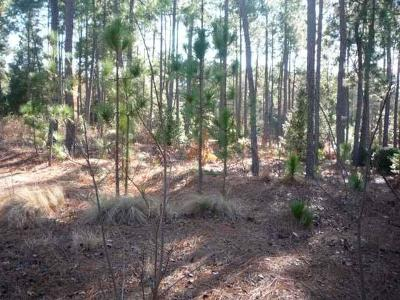 Pinehurst NC Residential Lots & Land For Sale: $85,000