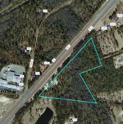 Residential Lots & Land For Sale: N Us Hwy 1