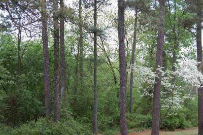 Residential Lots & Land For Sale: 660 Willow Lane