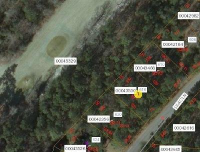 Residential Lots & Land Sold: 616 Lilac Lane