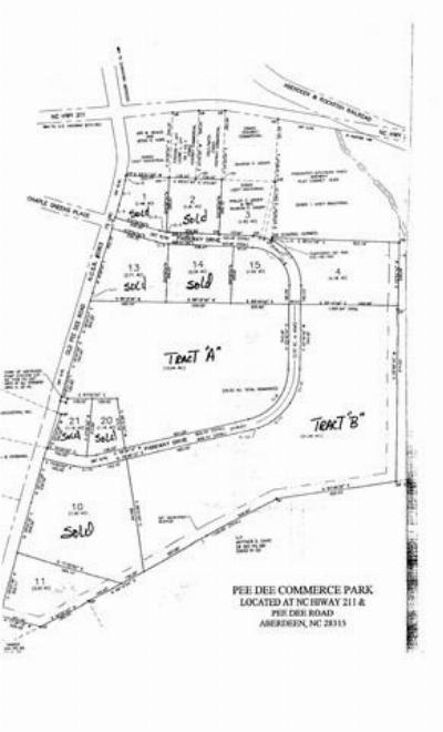 Commercial For Sale: 205 Parkway Drive