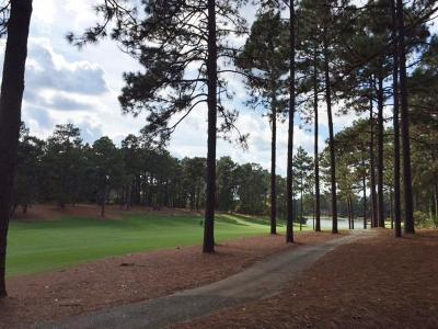 Pinehurst NC Residential Lots & Land Sold: $90,300