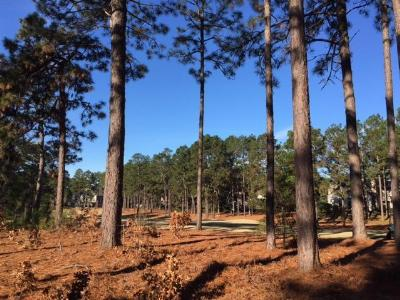 Pinehurst NC Residential Lots & Land Sold: $60,000