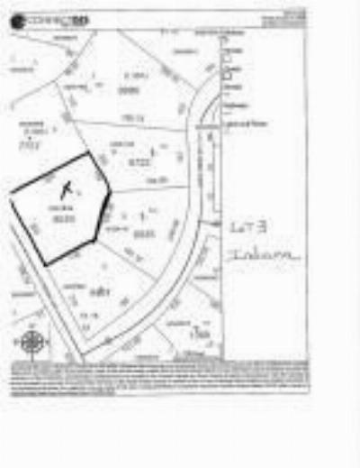 Residential Lots & Land Active/Contingent: 1667 E Indiana Avenue