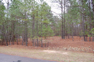 Residential Lots & Land For Sale: 363 Chestnut