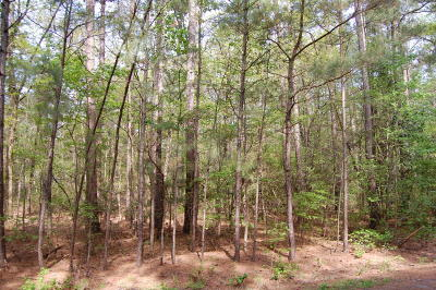 Residential Lots & Land For Sale: 715 Crabapple Lane