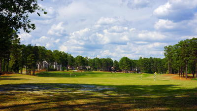 Pinehurst, Raleigh, Southern Pines Residential Lots & Land Sold: 30 Royal County Down