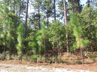 Southern Pines NC Residential Lots & Land Sold: $32,000