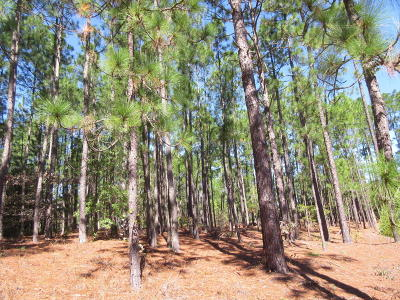Southern Pines NC Residential Lots & Land Sold: $34,000