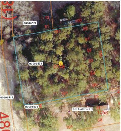 Aberdeen, Cameron, Carthage, Eagle Springs, Eastwood, Foxfire, Jackson Springs, Lakeview, Pinebluff, Pinehurst, Robbins, Seven Lakes, Southern Pines, Vass, West End, Whispering Pines, Woodlake Residential Lots & Land For Sale: Marion