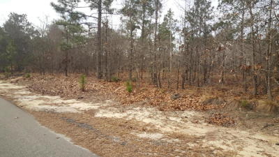 Residential Lots & Land For Sale: 1 Dogwood Court