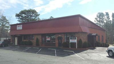Moore County Commercial For Sale: 1113-1115 Old Us Hwy 1