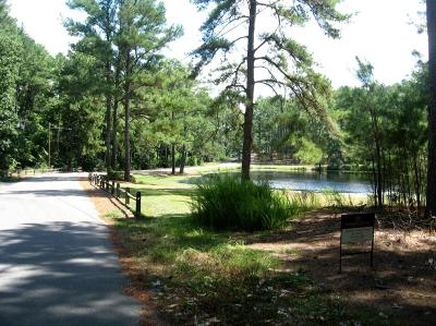 Southern Pines Residential Lots & Land For Sale: 975 Sandavis Road