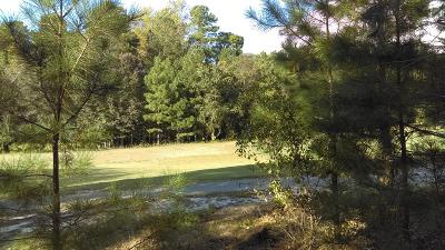 Residential Lots & Land For Sale: 102 Bancroft Court