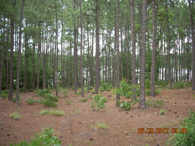 Pinehurst Residential Lots & Land For Sale: 13 Abington Drive