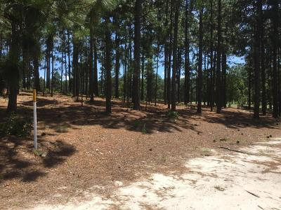 Southern Pines Residential Lots & Land For Sale: 43 Highland Drive