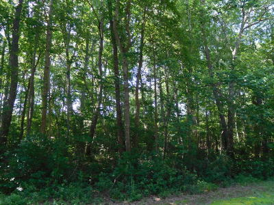 Residential Lots & Land For Sale: 23 Ridge Road