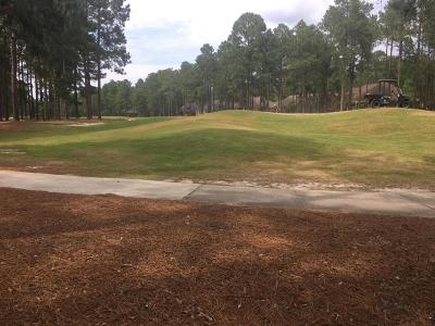 Southern Pines Residential Lots & Land For Sale: 224 Plantation Drive