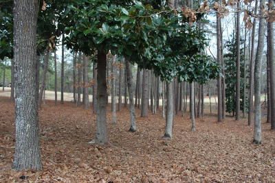 Pinewild Cc Residential Lots & Land For Sale: 14 Pomeroy
