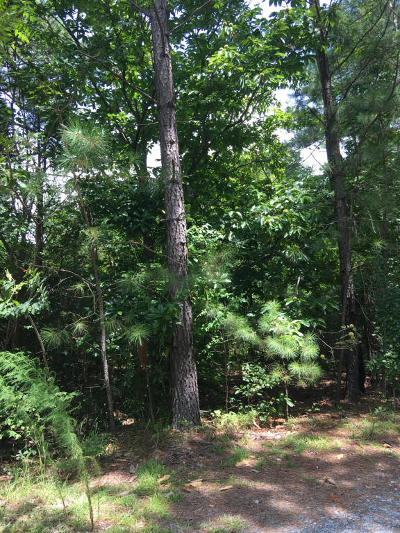 Southern Pines Residential Lots & Land For Sale: Off McNeil Road