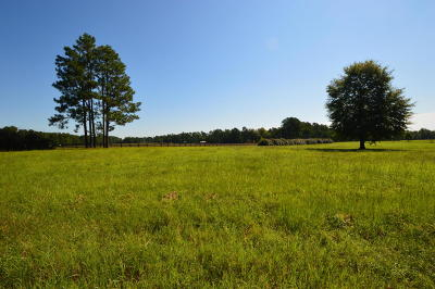 Southern Pines Residential Lots & Land For Sale: 146 Jean Marie Lane