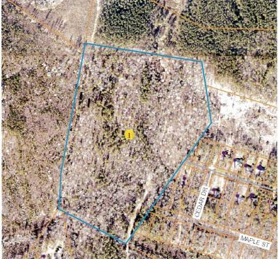 Carthage Residential Lots & Land For Sale: Poplar Street