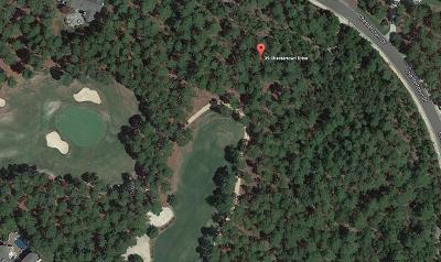 Pinehurst Residential Lots & Land For Sale: 39 Chestertown Drive
