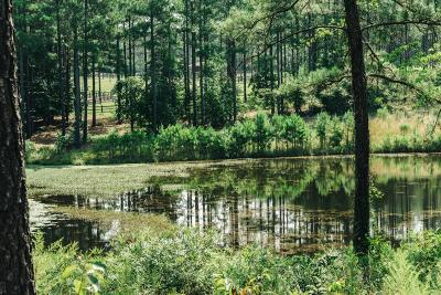Foxfire Residential Lots & Land For Sale