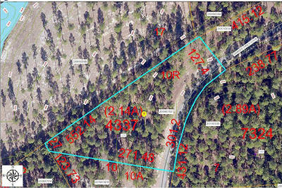 Residential Lots & Land For Sale: 170 Grande Pines