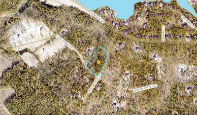 Residential Lots & Land For Sale: 190 Morgan Ridge Drive