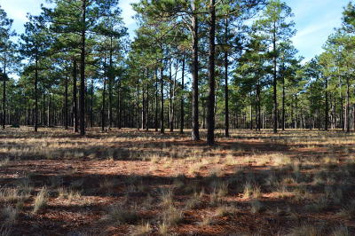 Southern Pines Residential Lots & Land For Sale: 284 Fox Box Rd