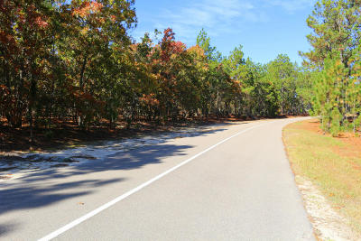 Pinehurst NC Residential Lots & Land For Sale: $160,000